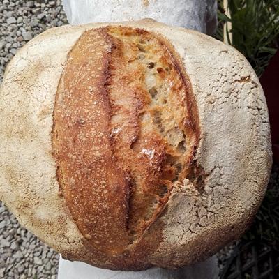 Le Campagne - Pains régulier de la boulangerie artisanale BARA'LO