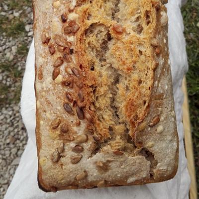 L'épeautre tournesol- Pains régulier de la boulangerie artisanale BARA'LO